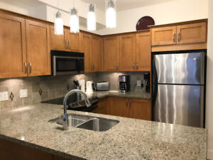 Squamish Artisan townhouse for rent