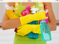 - REGULAR HIGH QUALITY CLEANING SERVICES - LICENSE - EXPERIENCE