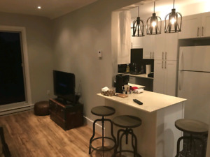 3bdr fully renovated per night located NDG