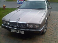 Jaguar classic for sale