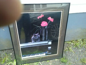 cat picture for sale