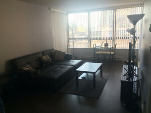 2 Bedroom 2 Bathroom Downtown Apartment For Rent