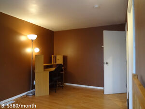 1 Room for Rent (May/Jun. to Aug.)  House, University Ave