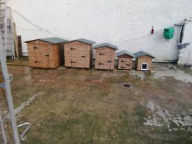 Dog boxes, cat boxes, dog kennels, dog box