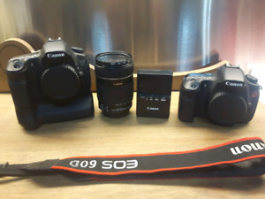 Canon 60D with 18-135mm IS lens