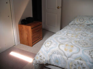 TWO  Bedroom Finished Basement area for rent in Lacombe