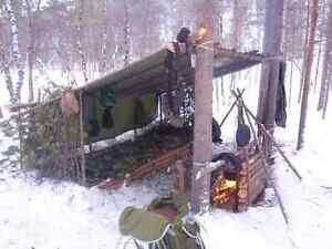 Accès à un bois forêt pour survie. Bushcraft