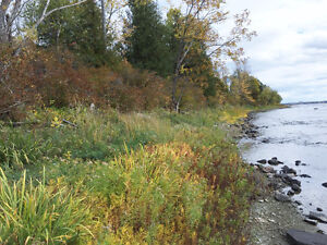 Ottawa River Property For Sale