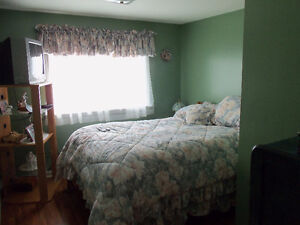 New Price!! 3 beds, 1.5 baths 27 Roberts Rd N, CBS St. John's Newfoundland image 6