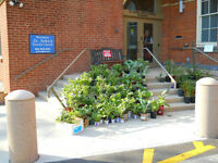 Plant & Rummage Sale - St. John's United Church