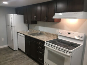 BRAND NEW lower level suite $975.00/Month