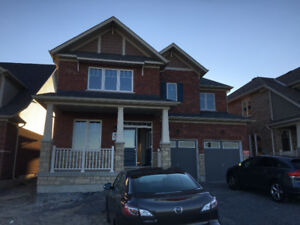 Beautiful big house for rent in oshawa
