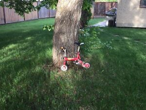 Micro Mini Monkey Bike  Edmonton Edmonton Area image 1