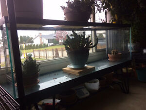 Hagen 130 Gal. Aquarium with stand and glass top. Prince George British Columbia image 1