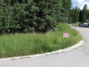 BY OWNER. Walk-out Lot on Forest  In Crowsnest Pass