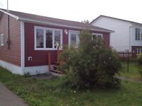 Grand falls-Windsor Fully renovated 3bdrm home for sale.