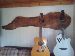 Support pour 2 guitare