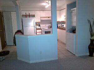 2 BEDROOM CONDO AVAILABLE TODAY! - PARTIALLY FURNISHED Kitchener / Waterloo Kitchener Area image 3