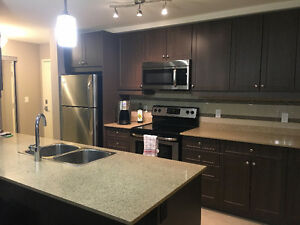 Spacious Modern 1 Bedroom - Mosaik Building - Lease Takeover London Ontario image 1