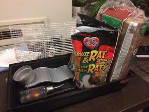 Pet rat starter kit