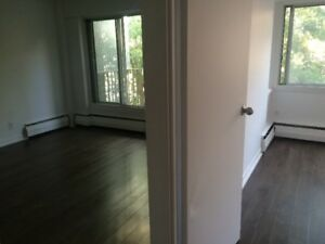 Le Barcelona 3 1/2 for rent near McGill starting September