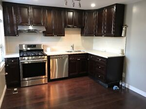 Brand New Charming Renovated large one bedroom close subway and