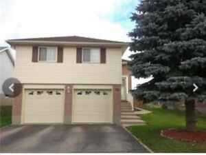 3 bdr single detached house with double garage