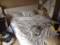 Used kingside bed to collect