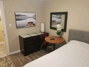 Fully furnished bachelor appartment for rent in Minnow Lake