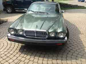 JAGUAR 1985 - COLLECTION