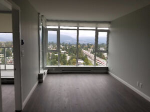 BRAND NEW 1 Bedroom in Coquitlam near SFU and Burquitlam Station