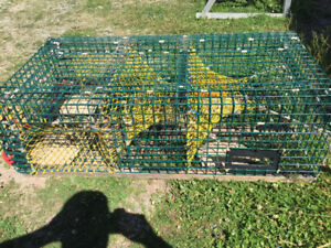 American Style Wire  Lobster Traps For Sale