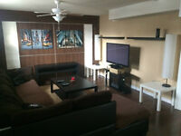 Newly renovated 1 bedroom basement suite for rent