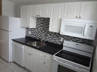 Newly Renovated, Spacious 1-Bedroom in North End
