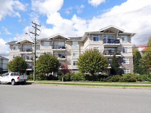 NEW LISTING! THE BRIXTON | #210-33255 OLD YALE RD | $299,900