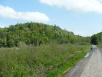 ACREAGE! 197 ACRES OF MUSKOKA PROPERTY/REAL ESTATE LAND FOR SALE