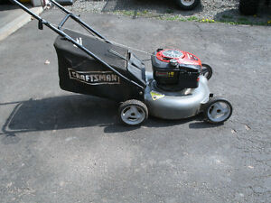 Lawnmower and Chainsaw for Sale