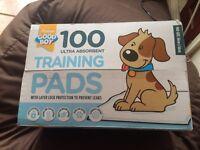 100 puppy pada