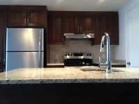 New Waterfront Condo for Rent- available as of March 1st
