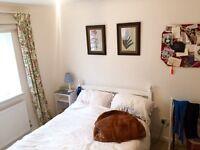 Beautiful Double room... ..