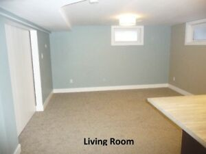 Executive 1 Bedroom Suite for Rent