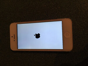 white iphone 5-32GB ( ROGER )reduced price