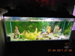 vends aquarium sur meuble 48 pouces