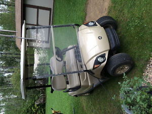 Selling 2009 electric golf cart with led lights and needs nothin
