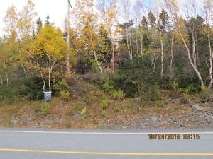 For Sale Commerical Land 8.56 acres Holyrood Access Right