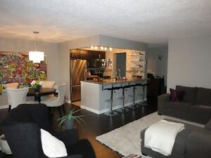 Downtown-Beautiful 1+ Bed Condo (avail. Jan. 1st) London Ontario image 1