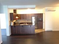 Luxury spacious 2 bedrooms apartment for rent hull plateau