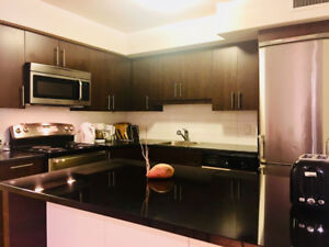 Big Bright 3 Br Close to McGill Downtown Montreal