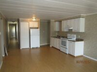 Spacious 3 Bedroom Home in Nice Location