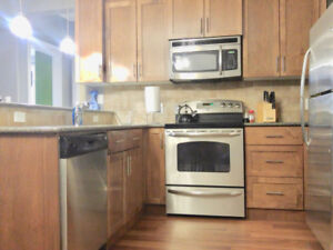 Huge, Modern 3-bedroom Apartment for Rent Downtown